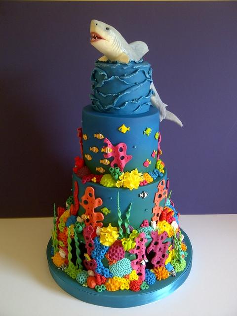 Shark Reef Cake