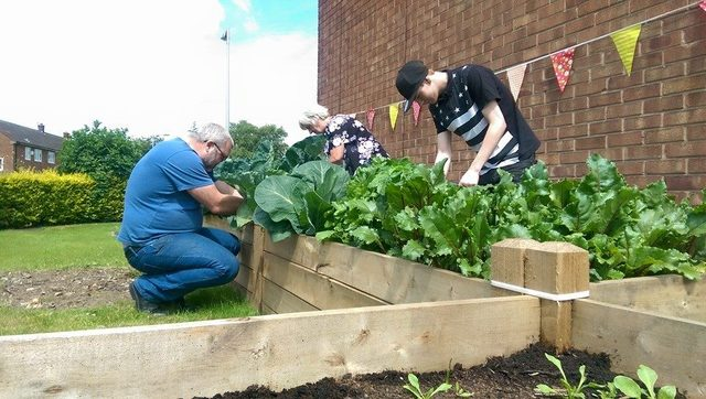 Grub n grow at Bramhall Hub