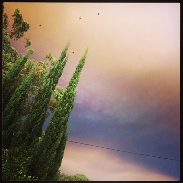 Bruised sky