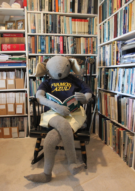 Heinrich Maus is enjoying quiet time in his library.