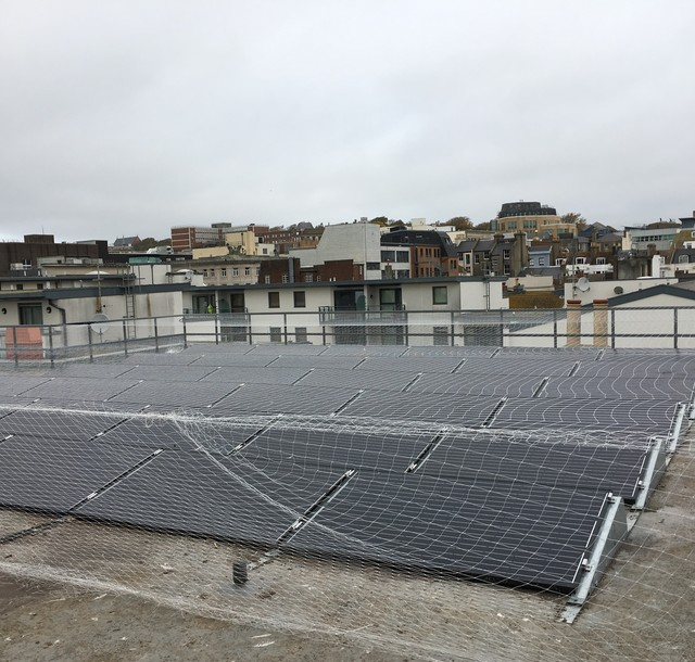 Anti-Seagull Netting for Rooftop Solar Array