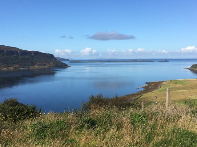 Perfect day watching red deer, seals & eagles on Isle of Skye